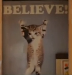 "The ""Cat Poster"""