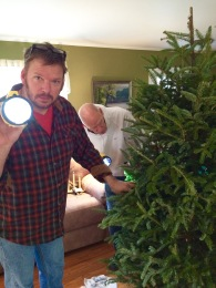 Taking down the tree, the search for ornaments